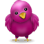 tgm_twitter_icon_pink[1]